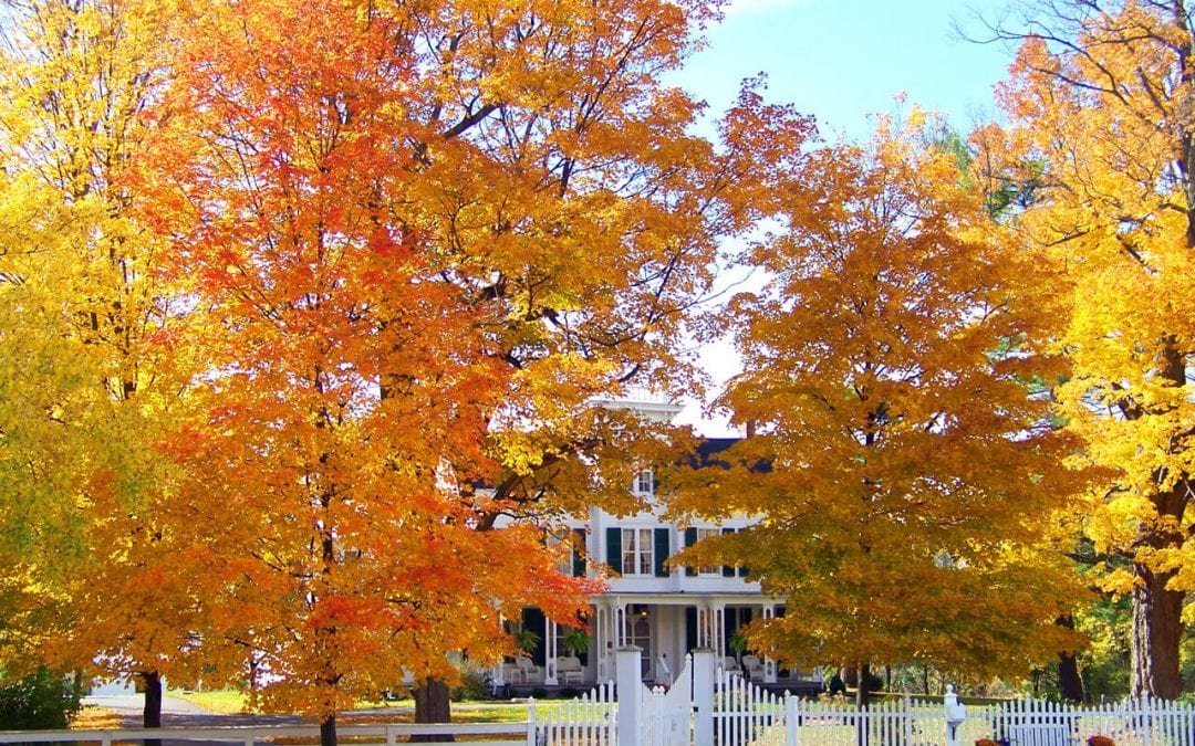 6 Ways to Prepare Your Home for Fall